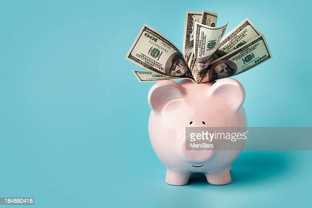 pink piggybank stuffed with dollar bills - savings stock pictures, royalty-free photos & images