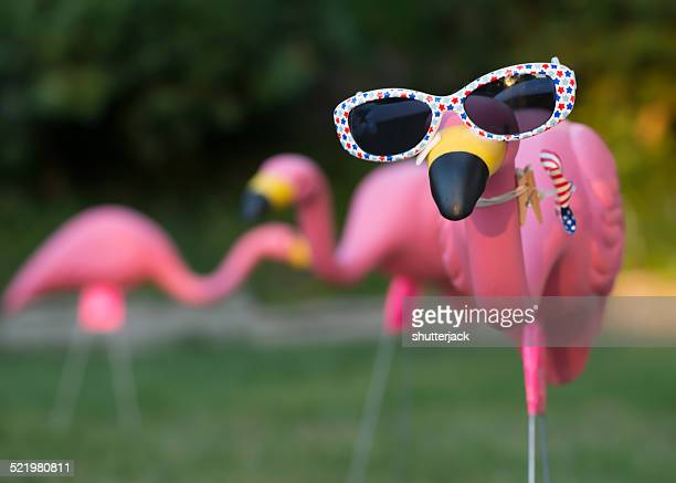 Pink plastic flamingos in backyard