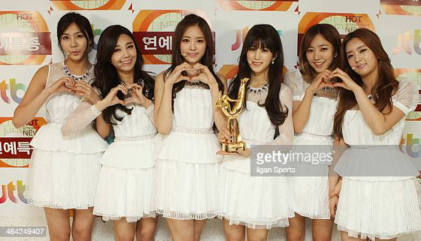 A pink pose for photographs during the 28th Golden Disk Awards at Kyunghee Grand Peace Palace on January 16 2014 in Seoul South Korea
