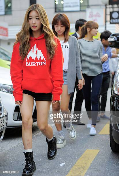 A pink pose for photographs during the 'Burton' flagship store opening event on September 19 2014 in Seoul South Korea