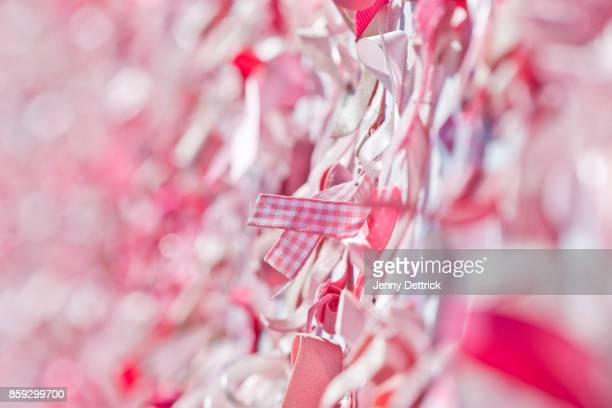 pink ribbons - women's issues stock photos and pictures