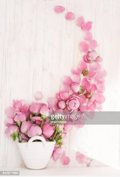 Pink Rose belleza