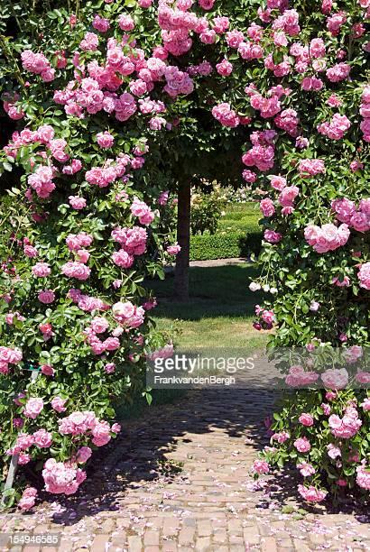 Pink Rose Gate