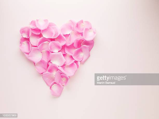 pink rose petals forming heart-shape - rose petals stock pictures, royalty-free photos & images