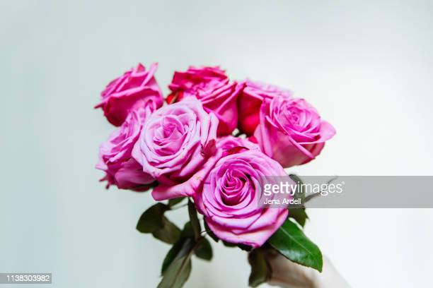 pink roses, bouquet, rose bouquet, valentine's day, love, romance - jena rose stock pictures, royalty-free photos & images