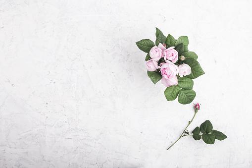 Pink roses in vase - gettyimageskorea