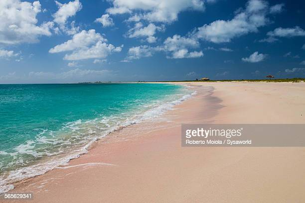 pink sand beach antigua west indies - harbor island bahamas stock photos and pictures