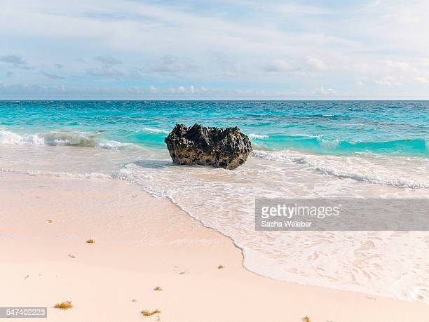 Pink sand beach of Bermuda with rock