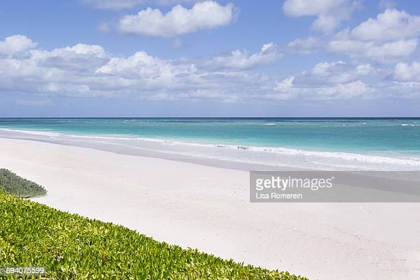 pink sand beach - harbor island bahamas stock photos and pictures