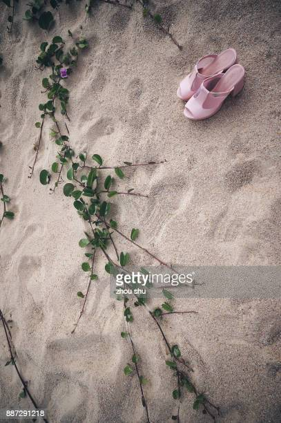 Pink sandals on the beach