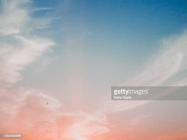 pink sunset cloudy sky. flying birds silhouette. - arch stock pictures, royalty-free photos & images