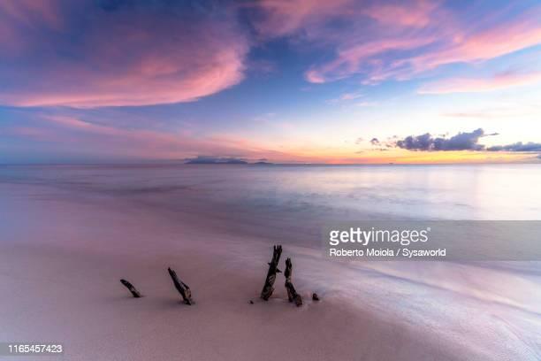pink sunset on fine sand beach, caribbean, antilles, - isla martinica fotografías e imágenes de stock