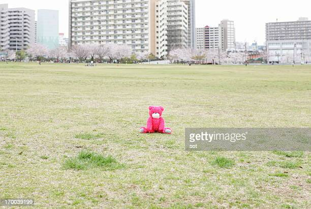 Pink teddy bear in the park