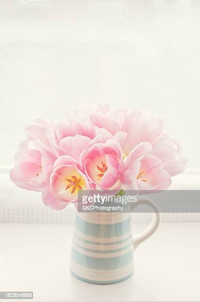 Pink tulips in jug