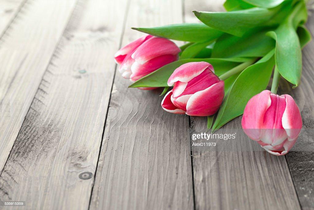 Rosa tulipanes sobre un fondo de madera : Foto de stock