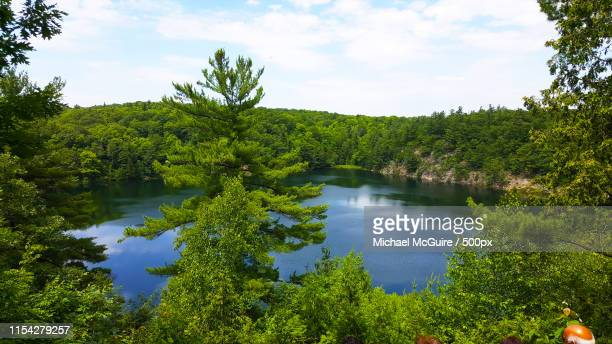 pinklake - gatineau stock pictures, royalty-free photos & images