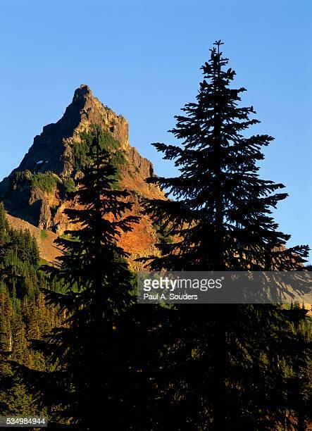 pinnacle peak in mount rainier national park - pinnacle peak stock pictures, royalty-free photos & images