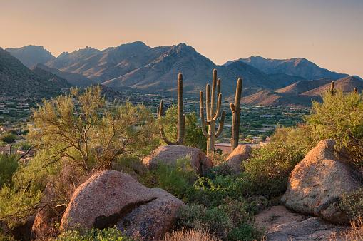 Pinnacle Peak Park as sun rises over cactus and hiking trails. 1009759582