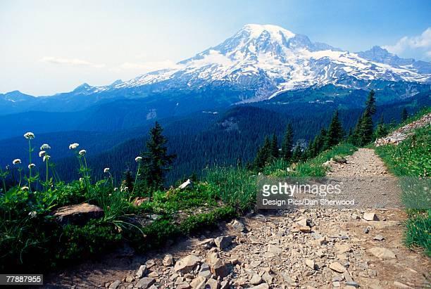 """""""pinnacle peak trail,mount rainier national park"""" - pinnacle peak stock-fotos und bilder"""