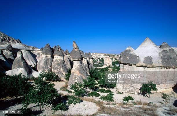 Pinnacles in Cappadocia
