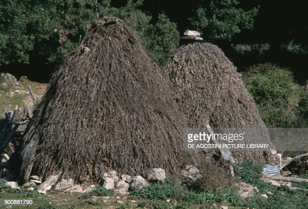 Pinneddu typical sheepfold in Supramonte Barbagia Ollolai Sardinia Italy