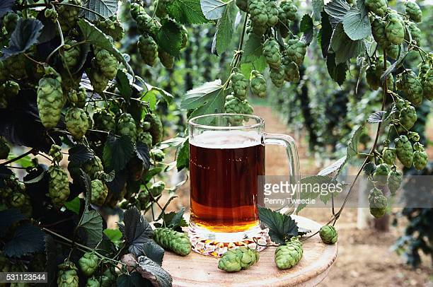 Pint of Beer with Hop Plant