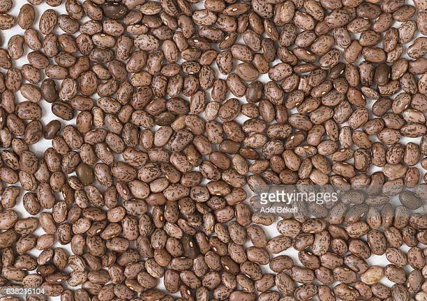 pinto beans background - pinto bean - fotografias e filmes do acervo