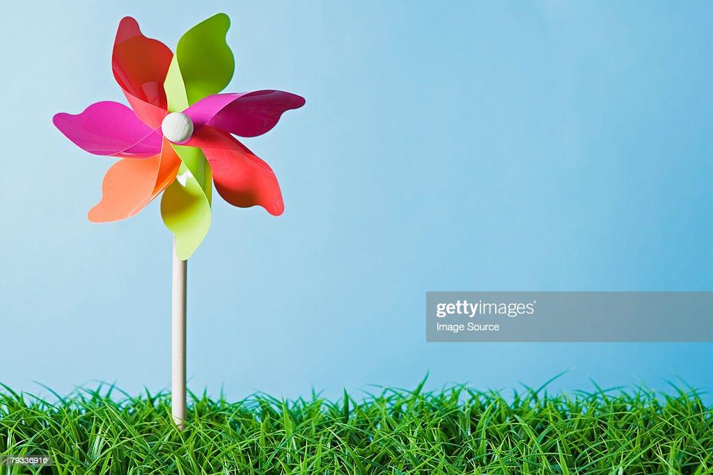 A pinwheel : Stock Photo