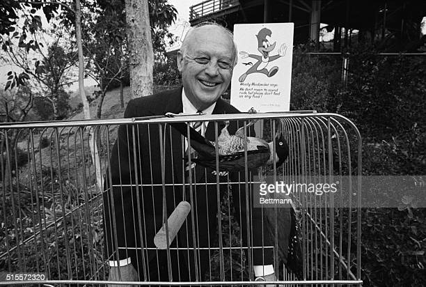 Pioneer cartoonist Walter Lantz, creator of Woody Woodpecker, watches the antics of one of three woodpeckers he adopted at the Los Angeles Zoo in...