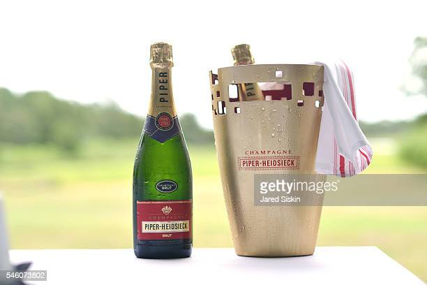 Piper-Heidsieck Champagne at the Royal Academy America Summer Brunch at the Pollock-Krasner House on July 10, 2016 in East Hampton, New York.