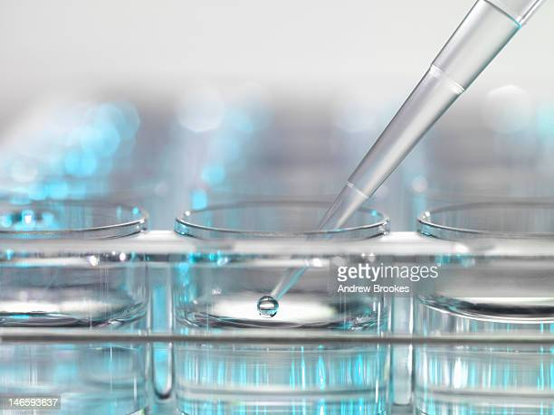 Pipette dropping liquid in clear jars