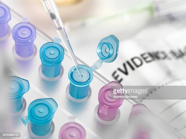 Pipetting DNA sample collected from crime scene into vial for forensic testing in laboratory