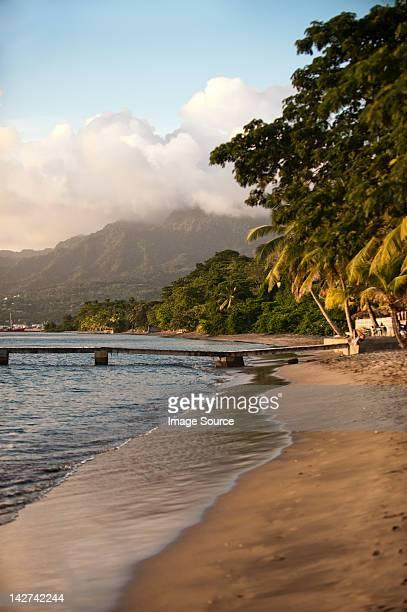 piquard beach, portsmouth, dominica, lesser antilles - dominica fotografías e imágenes de stock