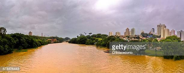 piracicaba river - crmacedonio stock pictures, royalty-free photos & images