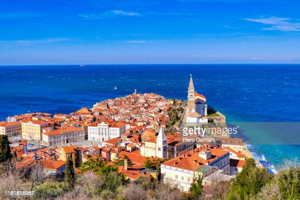 piran - slovenia stock pictures, royalty-free photos & images