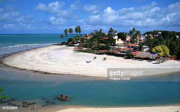 pirangi do sul, northeast brazil - natal brazil stock pictures, royalty-free photos & images