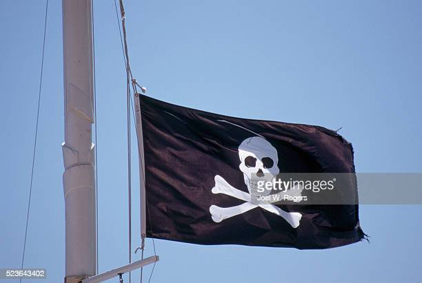 Pirate Flag in the Caribbean