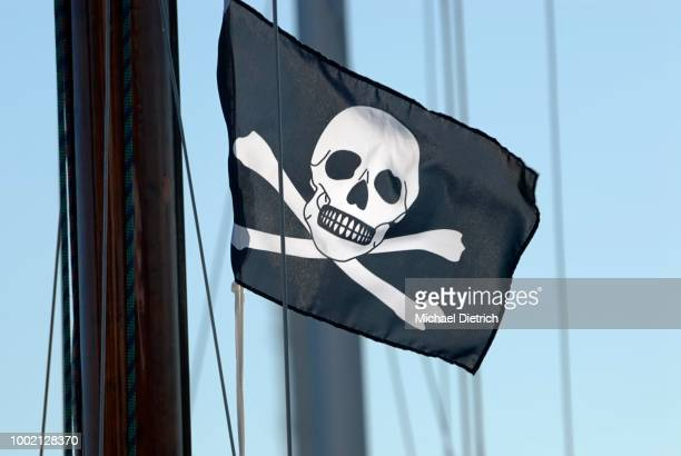 Pirate flag, Jolly Roger, black flag with skull and crossbones