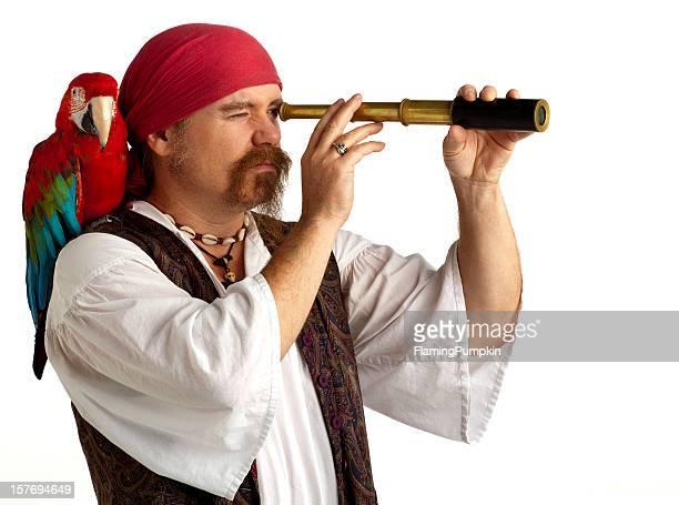 Papagaio de pirata com a procurar utilizando Telescópio pequeno, fundo branco.
