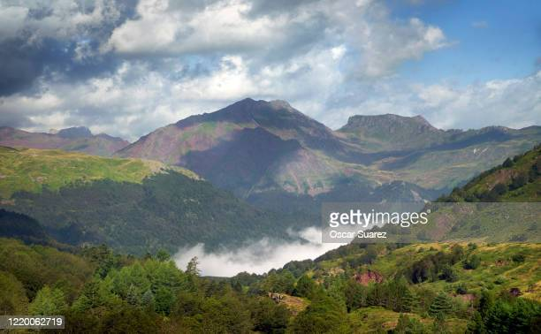 pirineos - south stock pictures, royalty-free photos & images