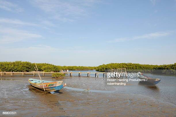 Pirogue (fishing boat) on the mangrove backwaters of the Sine Saloum Delta, Senegal, West Africa, Africa