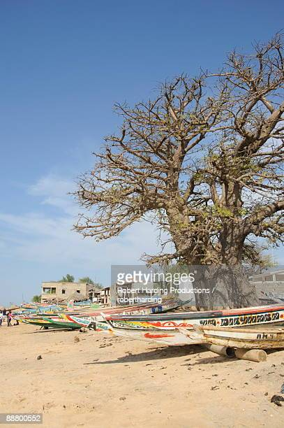 Pirogues or fishing boats, Fishing Village, Saly, Senegal, West Africa, Africa