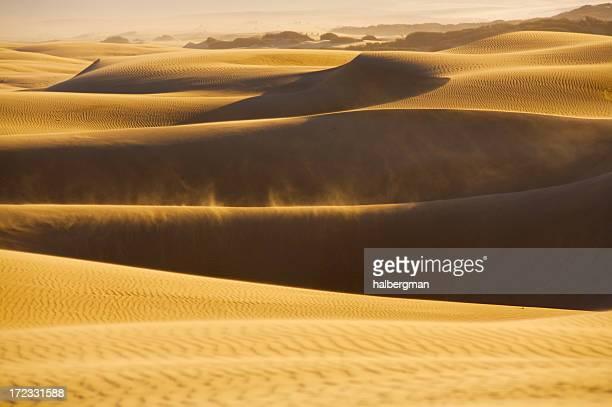 Sanddünen von Pismo Beach