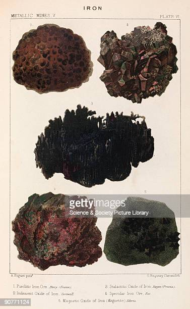 Pisolitic iron ore Berry France iridescent oxide of iron Cornwall stalactitic oxide of iron Siegen Germany specular iron ore Rio magnetic oxide of...