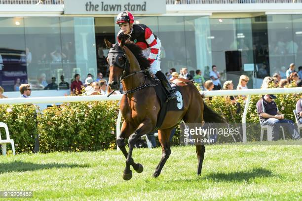 Pissaro ridden by Beau Mertens heads to the barrier before CS Hayes Stakes at Flemington Racecourse on February 17 2018 in Flemington Australia