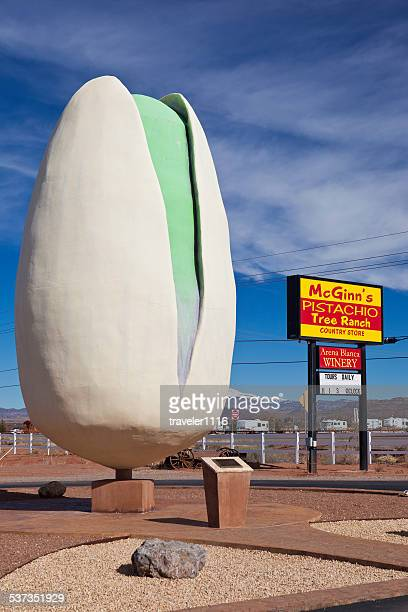 pistachioland in alamogordo, new mexico - biggest stock pictures, royalty-free photos & images