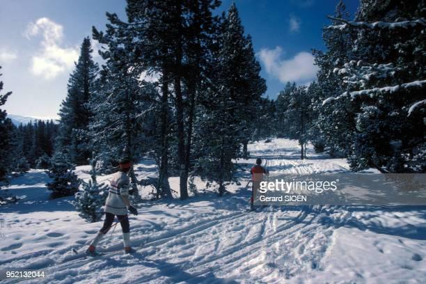 Piste de ski de fond à FontRomeuOdeilloVia en février 1984 dans les PyrénéesOrientales France