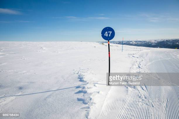 A Piste Marker on a Ski Slope in Southern Norway, Wintertime