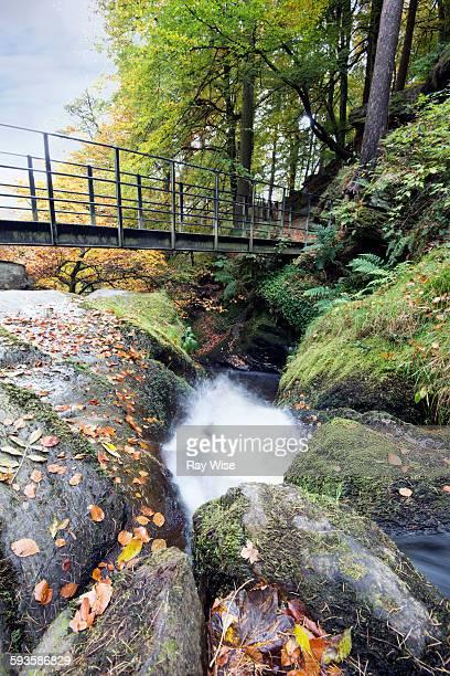 Pistyll Rhaeadr footbridge