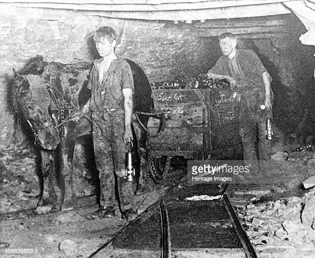 A pit pony pulling a tub full of coal at Brinsley Colliery Nottinghamshire 1913 Coal has been mined in the Eastwood area for nearly 700 years...